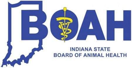 boah logo 450x232 1
